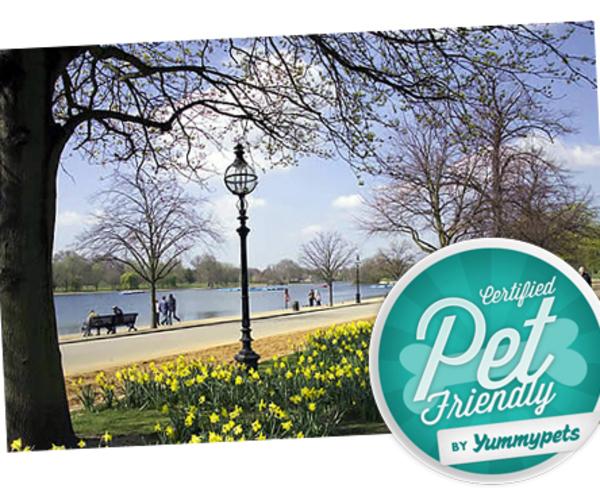 Pet Friendly - off leash dog parks in London