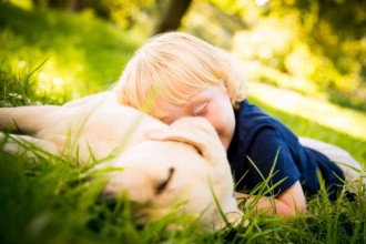 Les 10 races de chiens les plus…
