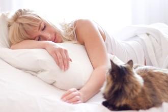 Dormir avec son chat : bonne ou…