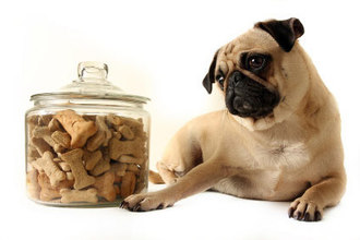 DIY - Homemade dog treats