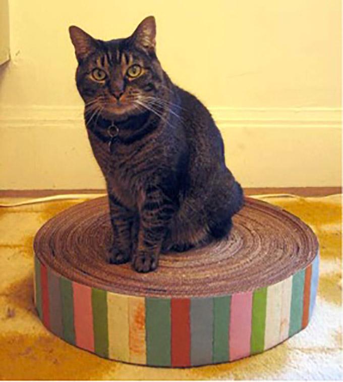 diy un pouf griffoir en carton pour votre chat yummypets. Black Bedroom Furniture Sets. Home Design Ideas