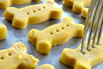 DIY - Pumpkin dog biscuits