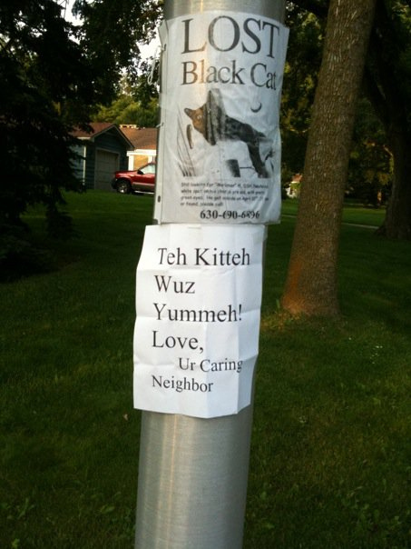 Hilarious Missing Cat Posters Yummypets - 20 hilarious lost pet signs