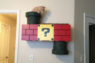 The Mario cat tunnel: so geek!