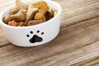 Recette : un bon petit plat pour chiens…