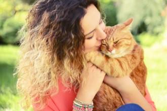 Garder son chat en bonne santé