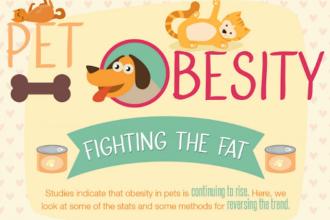 Obesity: the silent killer