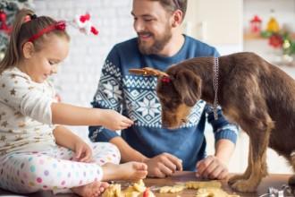 Deux recettes de Noël pour chiens et…
