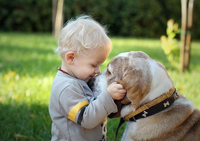 blog_yummypets_votre_enfant_a_besoin_dun_chien_16_12_2015