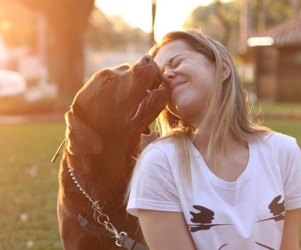 5 Ways dogs show they love you!