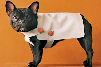 DIY - A suede coat for your dog