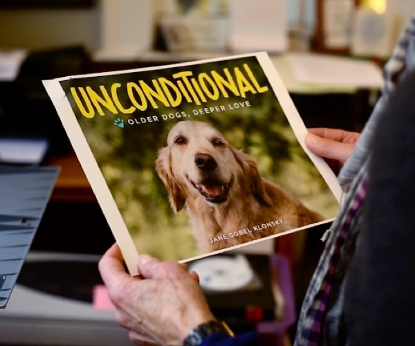 Unconditional: Photographer captures the love old dogs have