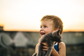 The benefits of having a cat for children