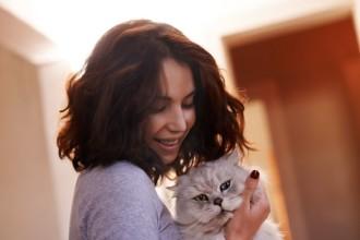 Comment devenir un meilleur propriétaire de chat cette…
