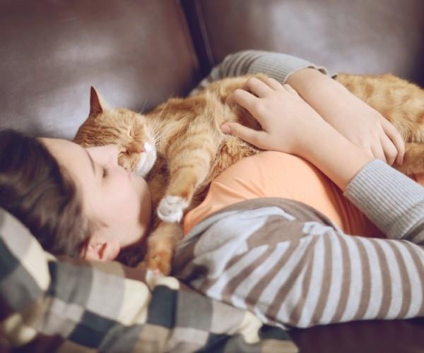 Les raisons qui prouvent que votre chat vous aime