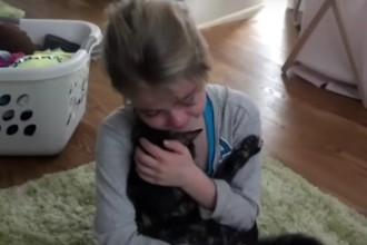 A girl finds her lost cat