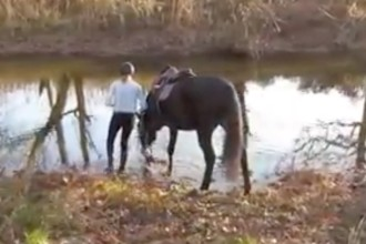 This horse gets over his fear in the cutest way