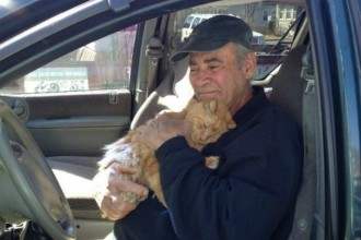 This man feeds 70 stray cats every day