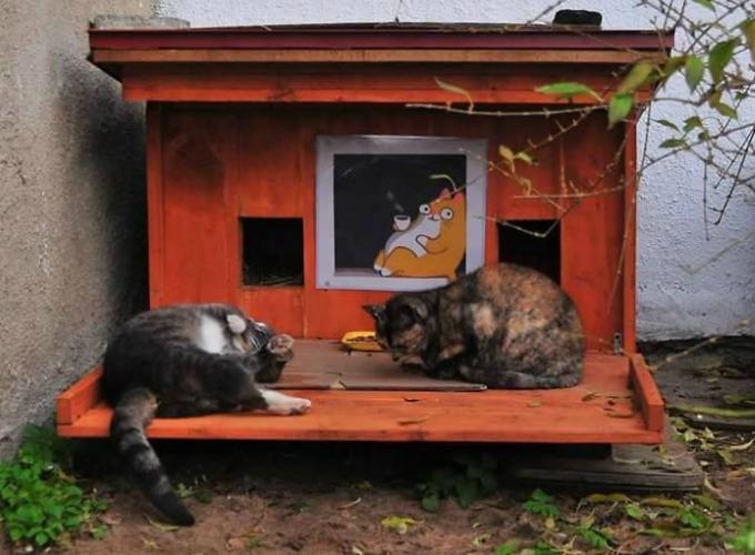 de petites maisons en bois pour prot ger les chats errants. Black Bedroom Furniture Sets. Home Design Ideas