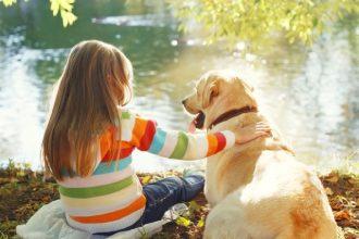 Cohabitation entre un enfant et un chien : les précautions