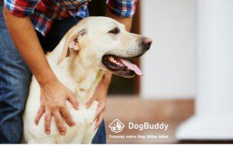 Découvrez DogBuddy, la plateforme de…