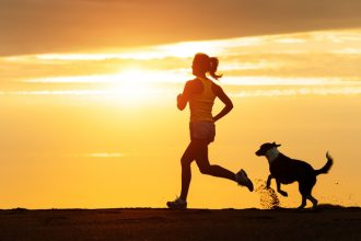 Top 5 sporty & active dog breeds