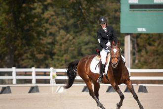 Équitation : comment bien choisir sa…