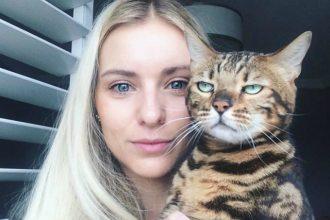 10 chats qui n'aiment pas les selfies (pour notre plus…