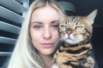 10 cats who just hate selfies
