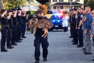Police officers lined the street in heartbreaking send-off…