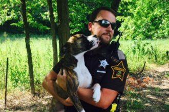 Un policier offre une nouvelle vie à cette chienne…
