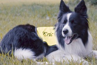 Eric the therapy dog who changes lives
