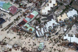 Ouragan Irma : le sort incertain des animaux de compagnie