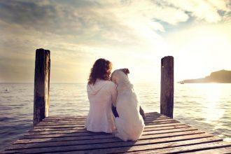 10 preuves que votre chien est votre meilleur ami !