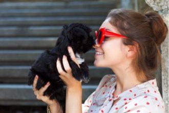 3 compañías te dan días libres cuando adoptas un cachorro