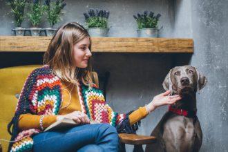 Éduquer son chien à rester seul