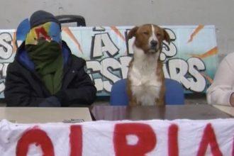 Faculté de Tolbiac : Guevara, le chien…